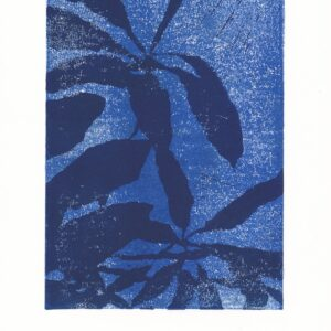 Schefflera Shadow linoprint – Blue + Dark Blue